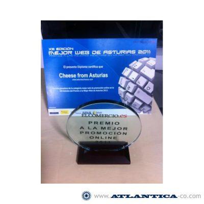 BEST PROMOTIONAL WEB PAGE 2011 AWARDS, GIJON, ASTURIAS