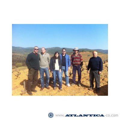 EL Bierzo Vineyard Road trip, Cacabelos (España), marzo 2012