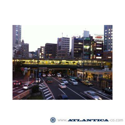 Tokyo Marketing Trip, Tokyo (Japón), noviembre 2012