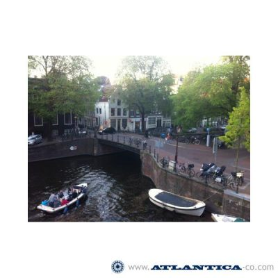 PLMA, Amsterdam (Holanda), mayo 2013