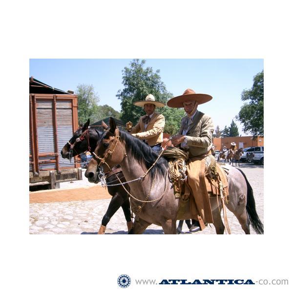 Alimentaria México, México Distrito Federal (México), junio 2007